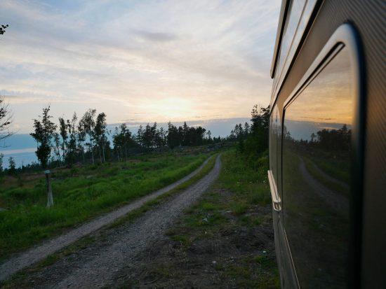 210620_Stendörrens Naturreservat_027